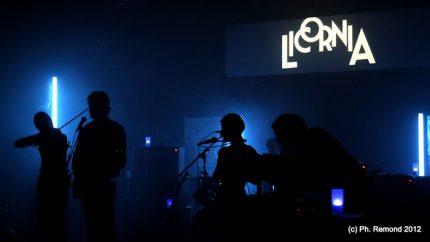 Licornia